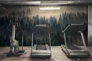 Fototapete Wald und Sport im Fitnessstudio zuhause
